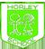 HIS logo green small
